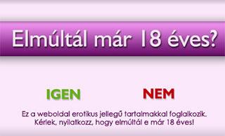 Az AbiNet Szexshop, azaz a www.szexshopom.hu web�ruh�z erotikus jelleg� tartalmakkal foglalkozik. K�rj�k nyilatkozzon, elm�lt-e m�r 18 �ves.